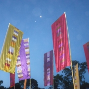 Our Bamboo Poles For Flags At Womadelaide