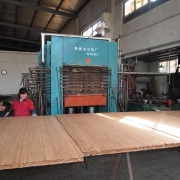 Ply construction