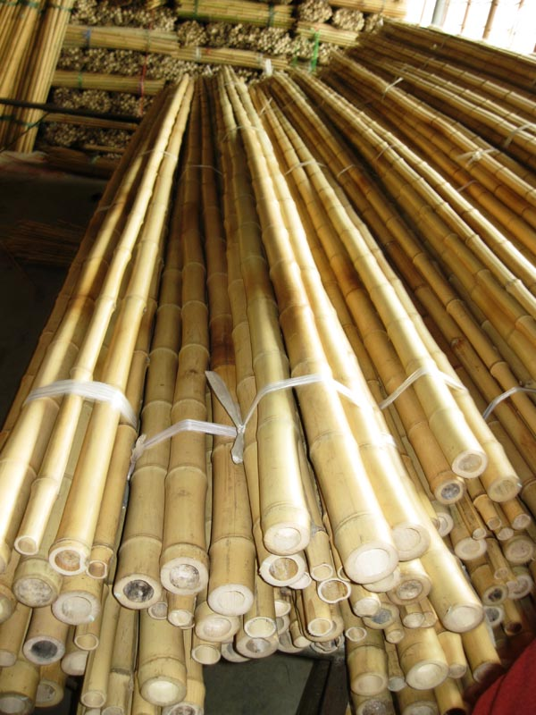 Bamboo australia peerless bamboo poles gallery for Where to buy bamboo sticks for crafts