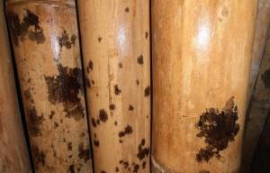 Peerless Bamboo Poles