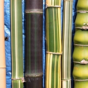 Peerless Bamboo Coloured Poles