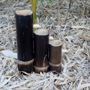 Bamboo Water Feature